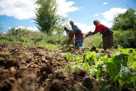Hơn 11 triệu người cần hỗ trợ nhân đạo tại Đông Phi