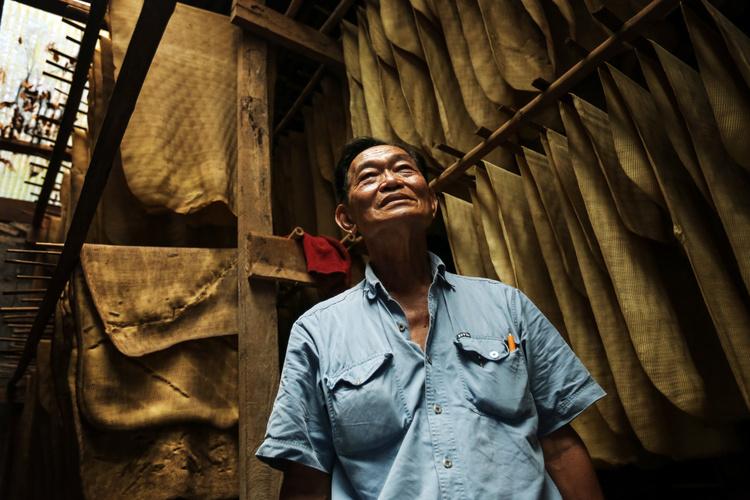 Thái Lan: người trồng cao su điêu đứng