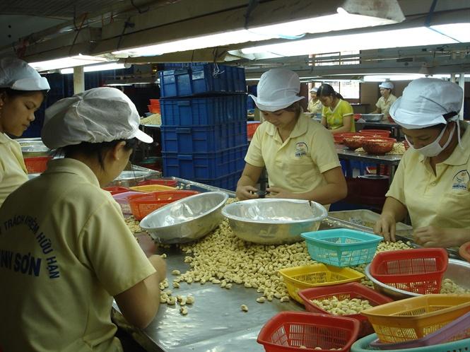 Phải coi thị trường là động lực thúc đẩy sản xuất nông nghiệp